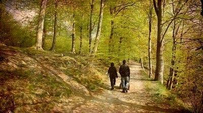 billede af gå en tur